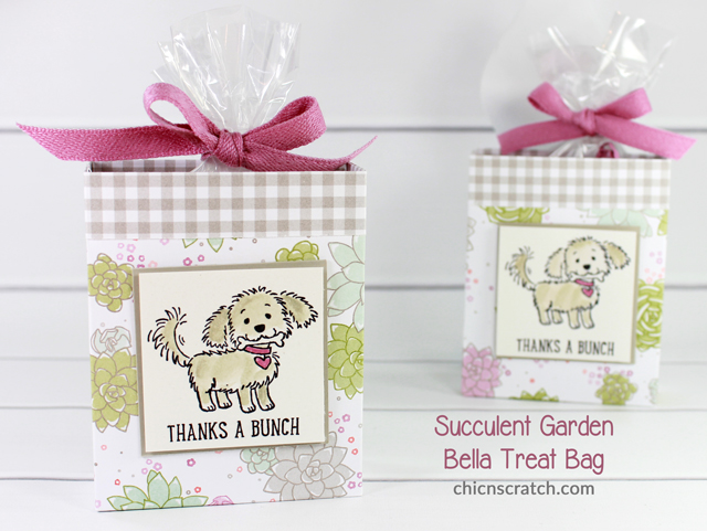 succulentgardenbellatreatbagb