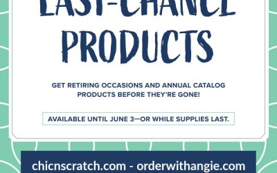 Last Chance Discounted Products