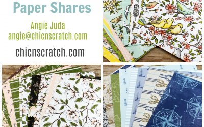 Designer Series Paper Shares – Round 2