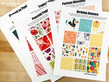 Designer Series Paper Charts Mini Catalog 2020